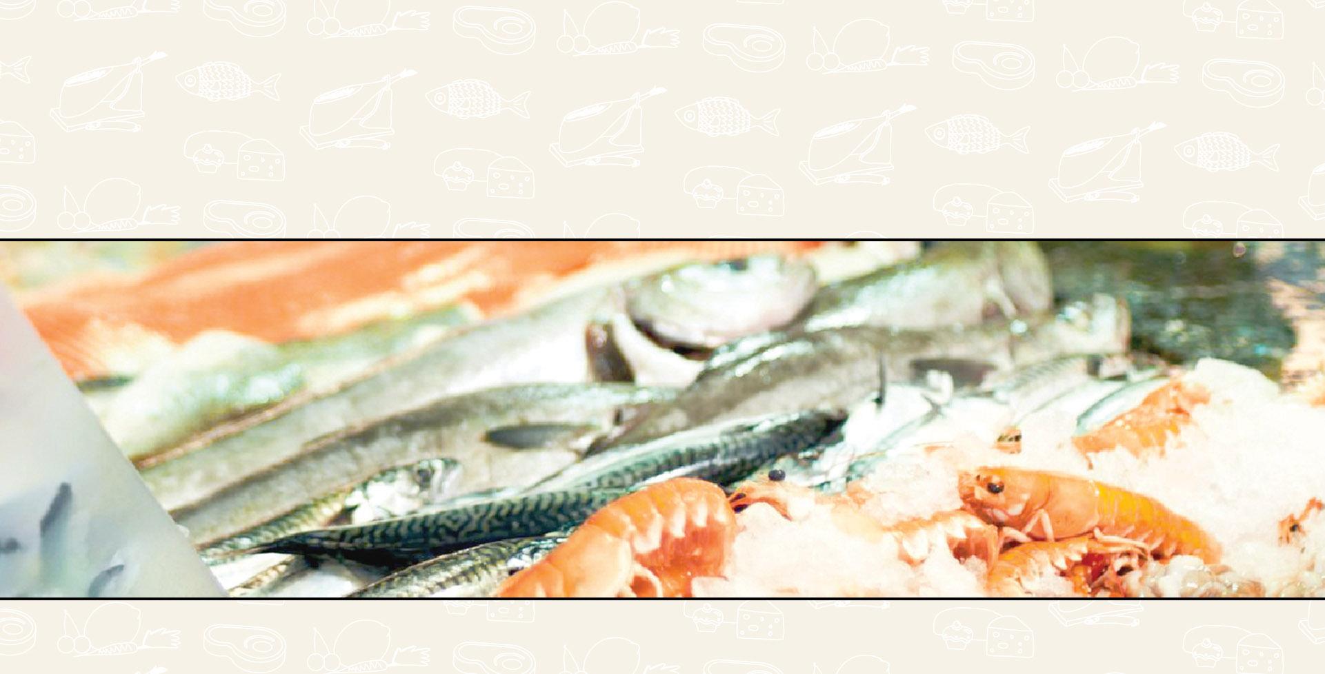 fondo-fish2